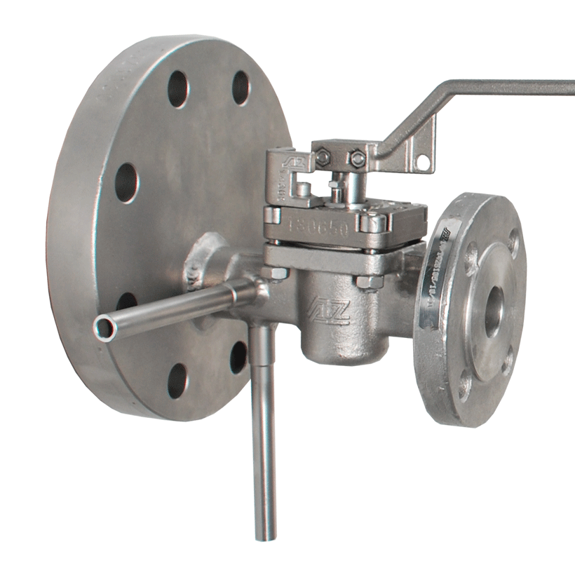 Test valve with oversize flange